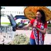 Les voyages de Choumicha …. Bangkok - Episode 5-Palais Royal